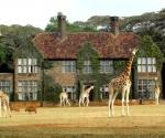 Отель в окружении жирафов