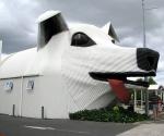 Здание Собаки