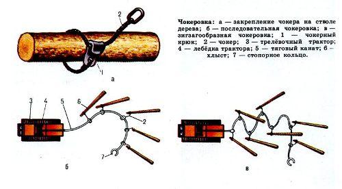 chokerovka