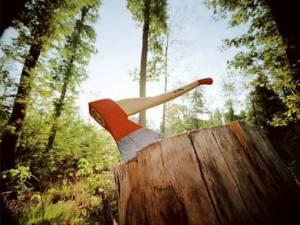 valka-lesa